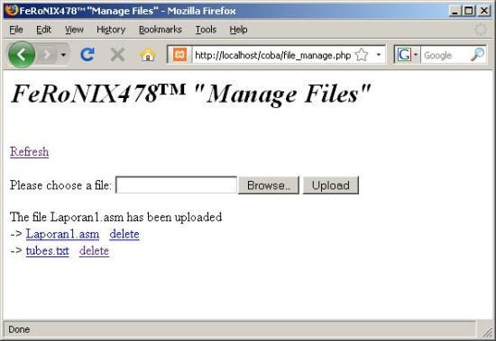 manage_file1